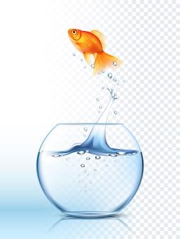 Cartaz saltando da bacia dos peixes dourados