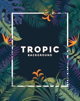 Cartaz tropical com moldura
