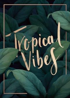 Cartaz tropical das vibrações