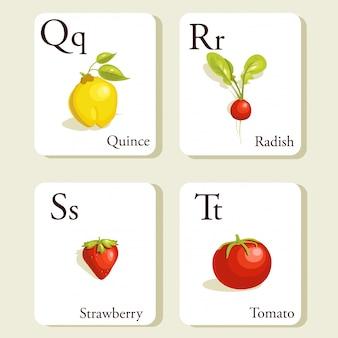 Cartões de alfabeto de frutas e legumes