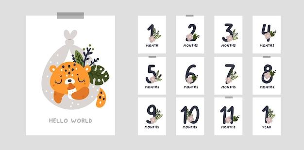 Cartões de marcos para o primeiro ano de vida do bebê. de 1 mês a 12 meses de idade
