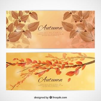 Cartões de outono realistas com folhas e galhos