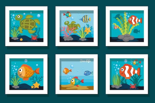 Cartões de pacote de ícones bonitos da vida marinha