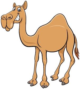 Cartoon dromedário camelo personagem animal em quadrinhos