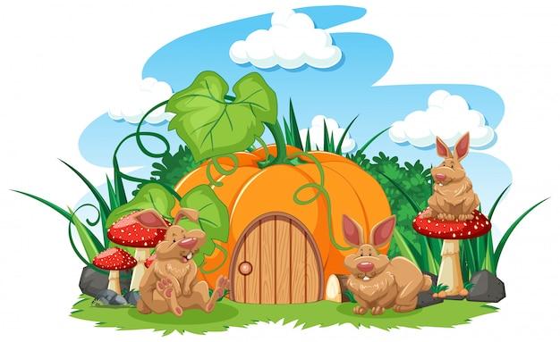 Casa de abóbora com estilo cartoon de três coelhos no fundo branco