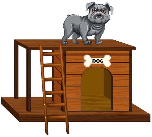 Casa de cachorro com pé de cachorro fofo