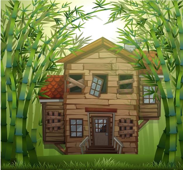 Casa de madeira velha na floresta de bambu