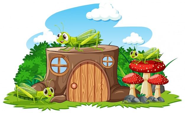 Casa de tronco com estilo cartoon de grasshoper em fundo branco
