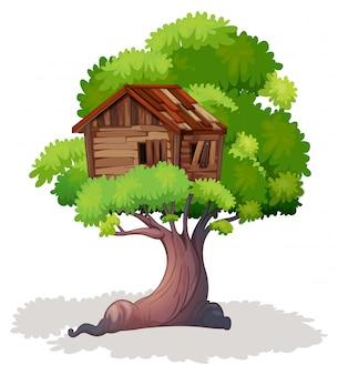 Casa na árvore na árvore