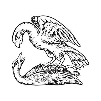 Casaco de pato e pato selvagem