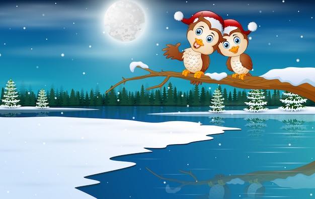 Casal de corujas usando um chapéu de natal na paisagem de inverno
