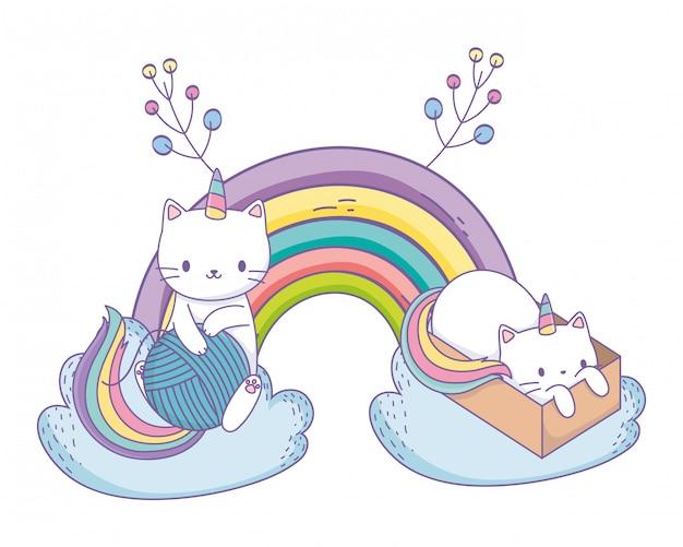 Casal de desenhos animados de gato unicórnio