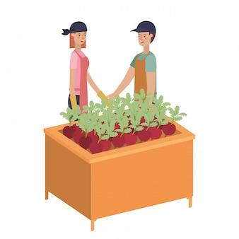Casal na prateleira de madeira com caráter de avatar de legumes