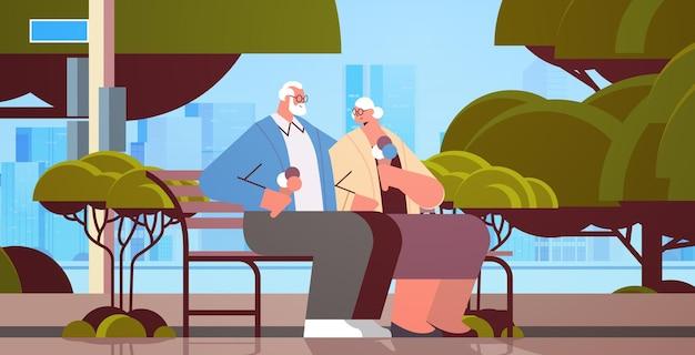 Casal sênior sentado no banco e comendo sorvete, avós felizes, passando um tempo juntos no parque ilustração vetorial horizontal de corpo inteiro