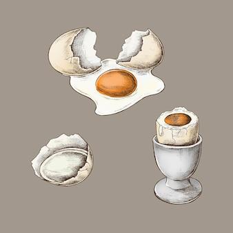 Casca de ovo rachada e ovo cozido