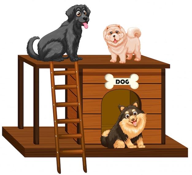Casinha de cachorro com cachorros fofos isolados