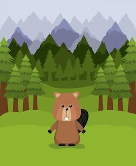 Castor animal e pinheiros