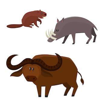 Castor fofo de vetor, búfalo touro, babirusa em estilo cartoon isolado