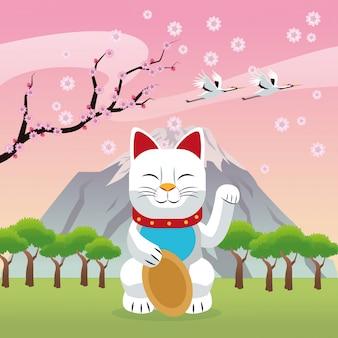 Cat chance sorte japão cultura marco ásia