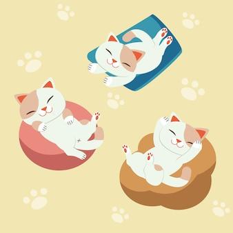 Cat sleep no travesseiro