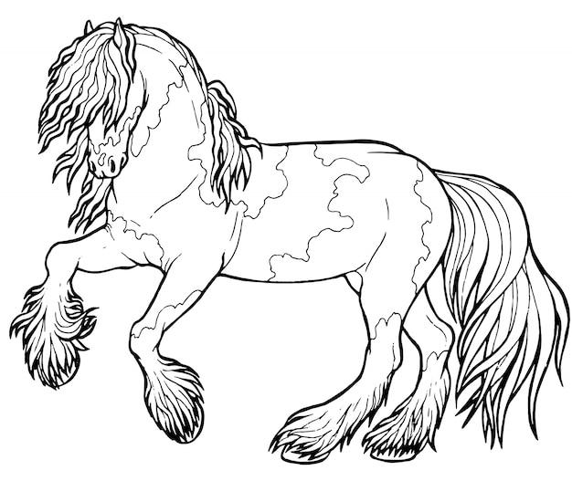 Cavalo corre trote. livro de colorir. o cavalo corre trote. livro de colorir. tinker é um cavalo puro-sangue.