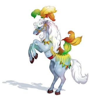 Cavalo de circo nas patas traseiras.