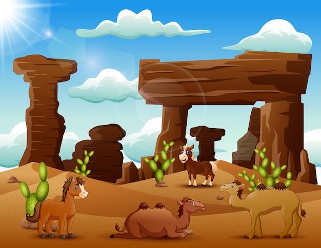 Cavalo dos desenhos animados e camelos apreciando no deserto