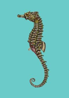 Cavalo marinho alinhado (hipocampo erectus) ilustrado por charles dessalines d'orbigny (1806-1876).