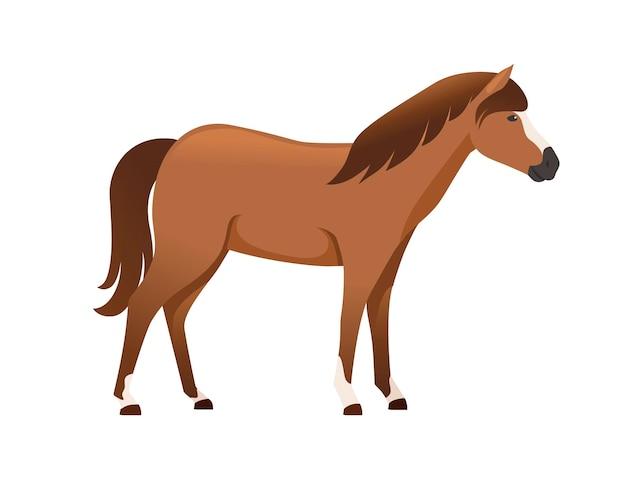 Cavalo marrom selvagem ou animal doméstico desenho ilustração vetorial plana