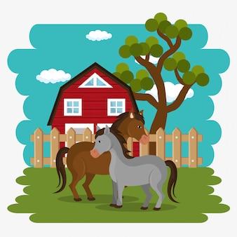 Cavalos na cena da fazenda