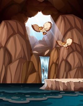 Caverna com cachoeiras e corujas