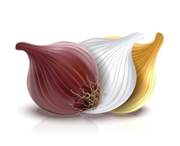 Cebola vermelha, dourada e branca isolada no branco