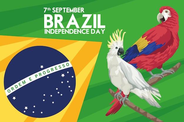 Celebração da independência do brasil