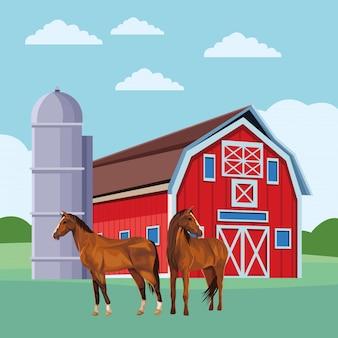 Celeiro e cavalos