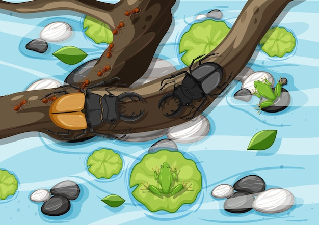 Cena aérea com besouros veados nos galhos do pântano