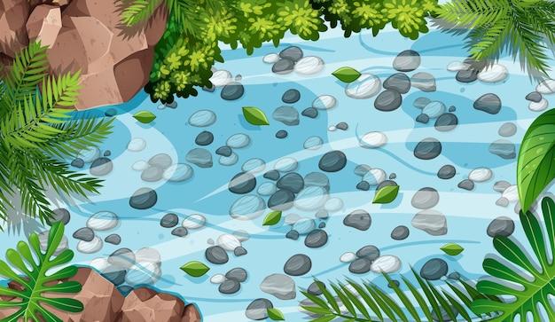 Cena aérea de floresta com pedras na lagoa