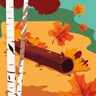 Cena bonita da paisagem de outono com árvores