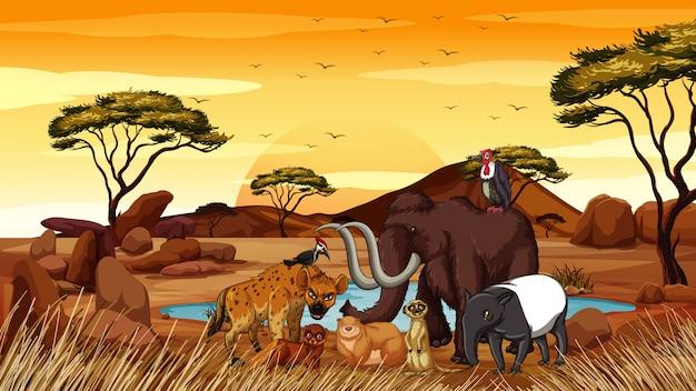 Cena com animais africanos no campo