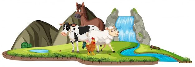 Cena com animais de fazenda em pé na cachoeira