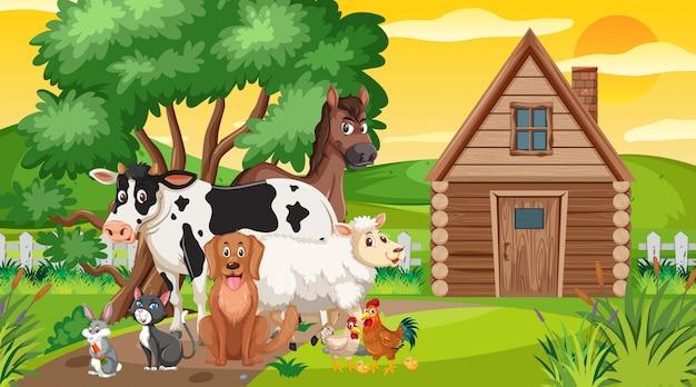 Cena com animais de fazenda no campo ao pôr do sol