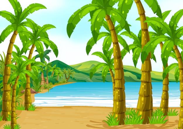 Cena, com, árvores, praia