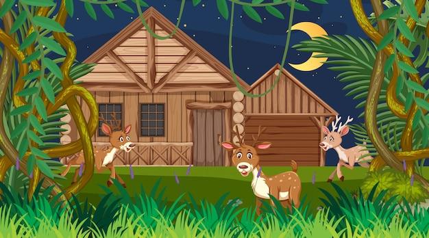 Cena com casa de madeira na floresta à noite
