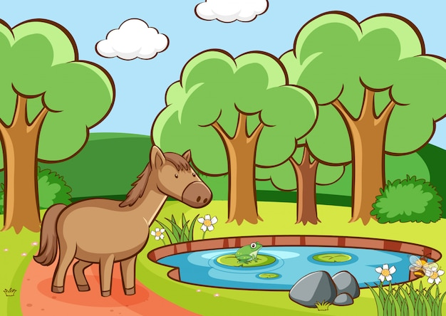 Cena com cavalo marrom na lagoa