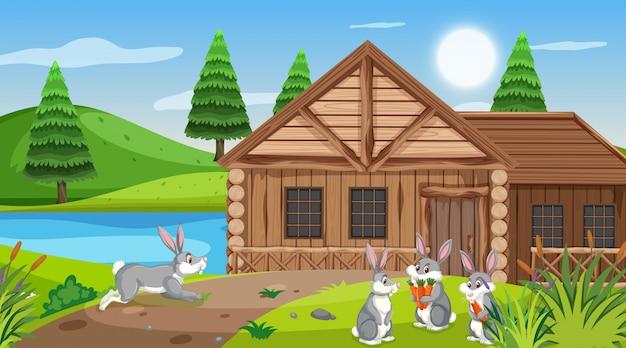 Cena com chalé de madeira no campo e coelhos comendo cenouras