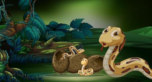 Cena com cobras chocando ovo