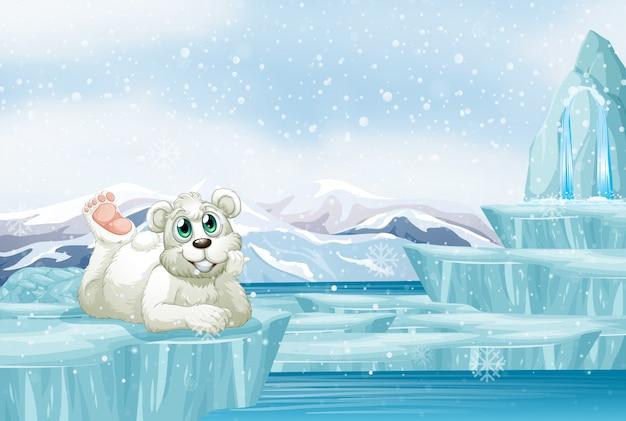 Cena com fofo urso polar no gelo