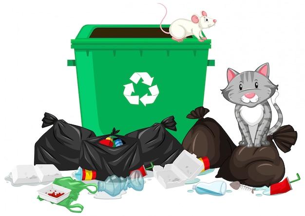 Cena com gato e rato na lata de lixo