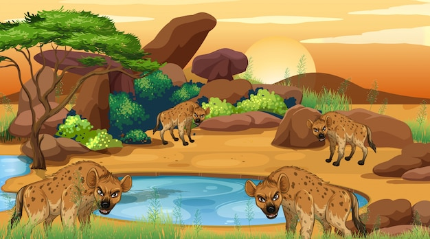 Cena com hiena no campo savana