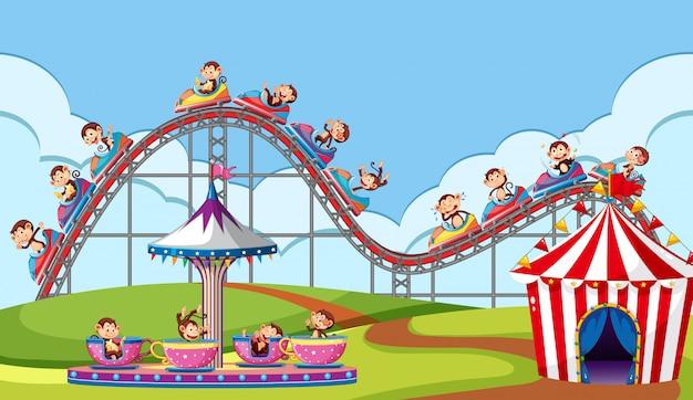 Cena com macacos andando em passeios de circo no parque