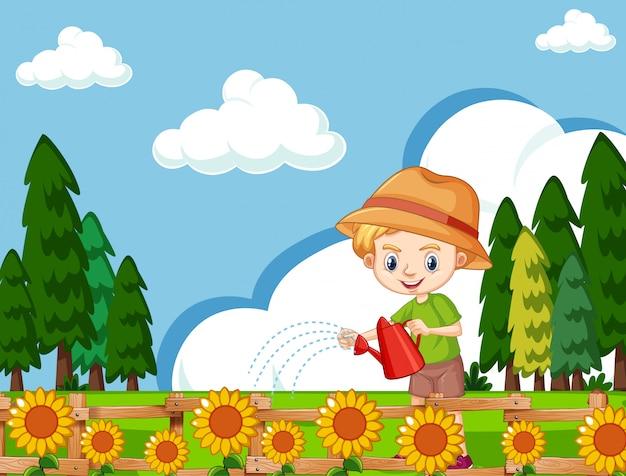 Cena com menino bonito, regando girassóis no jardim